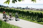 Cykel Bodensjön 9dgr fr.9.275:- med buss