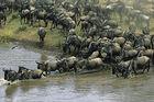 Det bästa av Tanzania